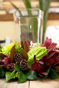 Christmas table centre: green Disbuds & Anthuriums, burgundy Cymbidium orchids, Silvan Red Leucadendrons, Berzelia, pine cones.