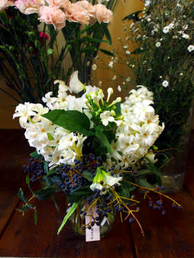 White Daphne, small eye catching display for table centre arrangement.  Highly perfumed.